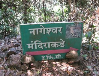 Way To Nageshwar Temple